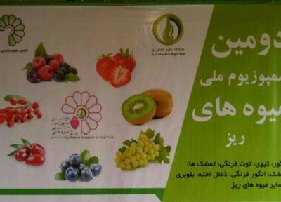 سازگاری بالای میوه های ریز در چالش تغییر اقلیم