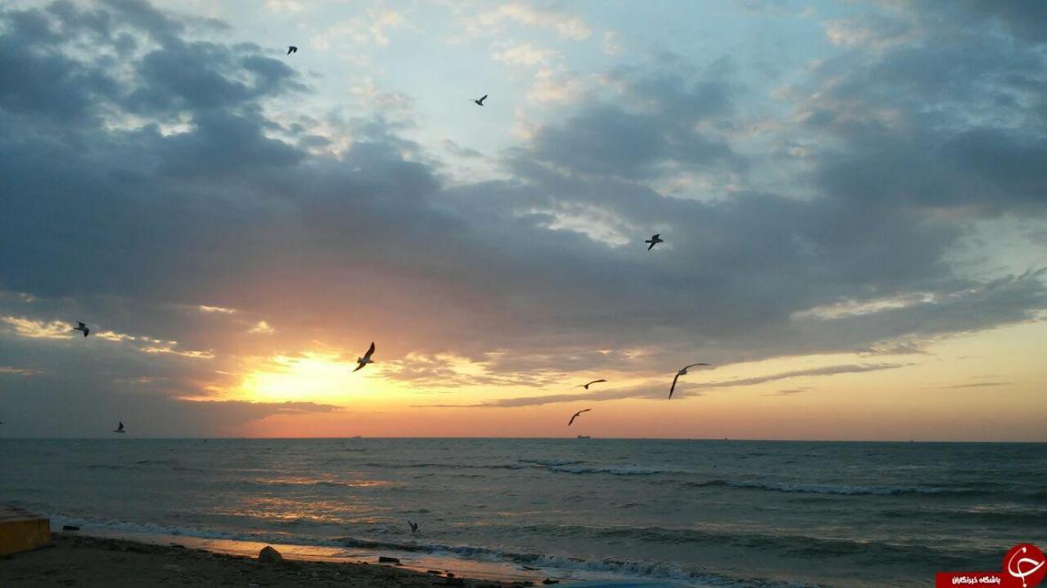 شهروندخبرنگار بوشهر؛ غروب زیبای خورشید در ساحل خلیج فارس
