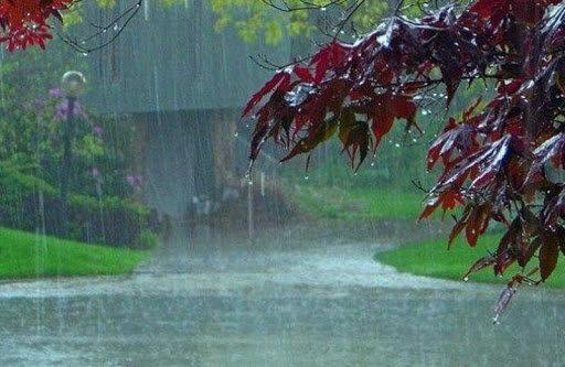 کاهش 6 درصدی بارندگی در زنجان طی سال زراعی جاری