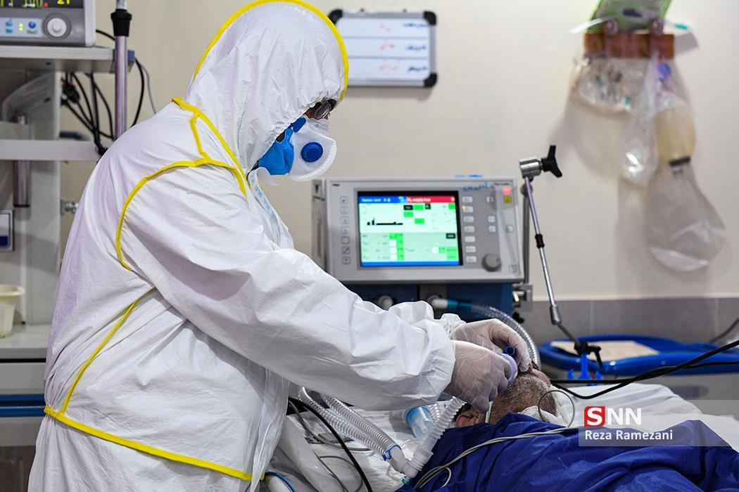 257 نفر در بوشهر به کرونا مبتلا هستند