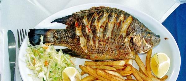طرز تهیه ماهی تیلاپیا رژیمی خوشمزه